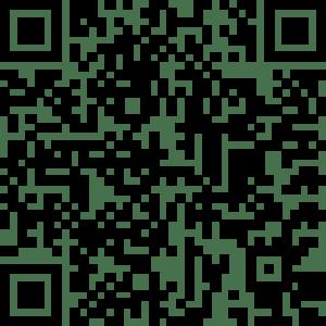 Friperie-AppStore-flashcode